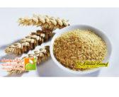 تعرف على الفوائد الرائعه لجنين القمح
